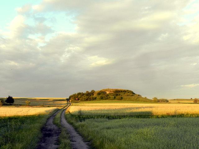 Rezerwat Przęślin