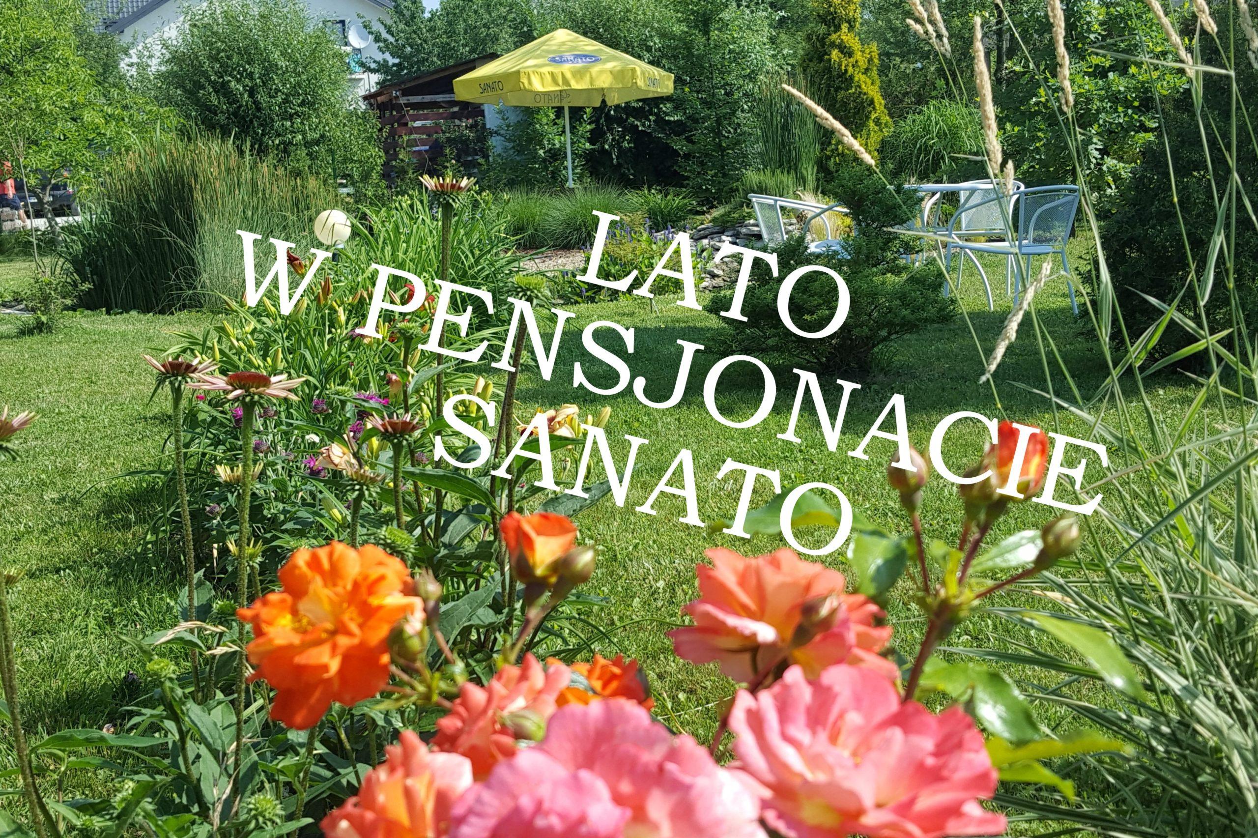 Pokoje gościnne Sanato - pensjonat Busko-Zdrój, kawiarnia, restauracja